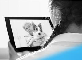 Pet-Care-in-the-Age-of-Telehealth