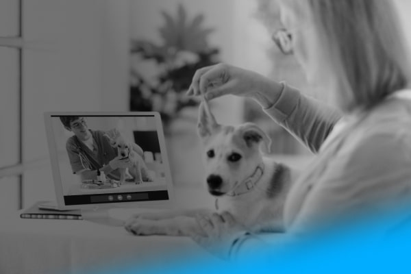 Veterinary-Telehealth
